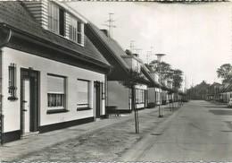 Rijkevorsel :  Lonenhofstraat    (  Groot Formaat 14.5 X 10.5 Cm ) - Rijkevorsel