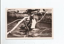TAHITI 23 (RARE) LA PLONGE POUR LA RECHERCHE DES HUITRES PERLIERES . PLUNGING FOR PEARL OYSTERS - Polynésie Française