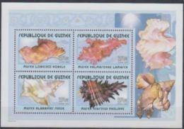 Guinée 2002 Shells Coquillages - Coneshells
