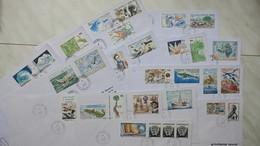 TAAF  Lot De 15 Lettre En Partance D'Alfred-Faure-Crozet  Des Années 1989-1993   Oblitéré - Tierras Australes Y Antárticas Francesas (TAAF)