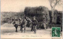 13 - ISTRES -- Attelage Dans La Crau - Istres