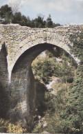 Tourtour 83 - Le Pont Romain - France