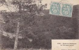 CPA Forêt De Paimpont - La Val Sans Retour - 1903 (29714) - Paimpont