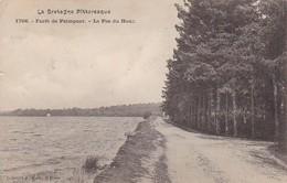 CPA Forêt De Paimpont - Le Pas Du Houx  (29715) - Paimpont