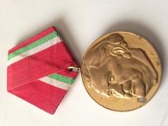 Medalla 100 Aniversario Nacimiento De Dimitrov. Bulgaria Comunista. 1882-1982. Ejército Búlgaro - Medallas Y Condecoraciones