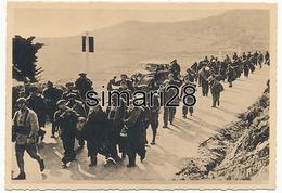 BANYULS - N° 19 - MILICIENS SUR LA ROUTE DE BANYULS (GUERRE D'ESPAGNE) - Banyuls Sur Mer