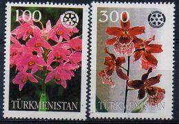PIA - TURKMENISTAN -  Fiori - Orchidee - Turkmenistan