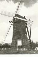 Arendonk - Steendonker - Anno 1770 - Arendonk