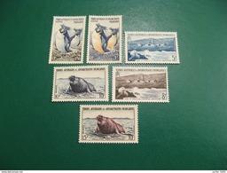 TAAF YVERT POSTE ORDINAIRE N° 2/7 TIMBRES NEUFS** LUXE - MNH - SERIE COMPLETE - COTE 51,40 EUROS - Französische Süd- Und Antarktisgebiete (TAAF)
