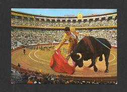 CORRIDA - TYPIQUE COURSE DE TAUREAUX - TOROS - BULLFIGHT - ANIMAUX - ANIMALS - Corrida