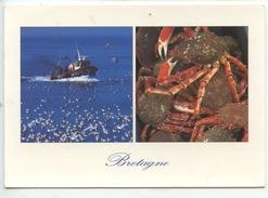Bretagne : Araignée De Mer (chalutier Bateau De Pêche N°1/4956 Jos) Spider Crabe Seekrabbe - Fishing