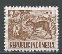Indonesia 1956. Scott #425 (MNG) Lesser Malay Chevrotain - Indonésie