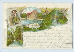 N3308-032./ Gruß Aus Dem Spreewald Litho AK 1898 - Ohne Zuordnung