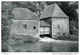 GROBBENDONK (Antw.) - Molen/moulin - De Watermolen Volop In Bedrijf D.d. 1989 (met De Oude Dakbekleding) - Grobbendonk