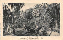 Tozeur éditée Pour Hôtels Transtlantique - Túnez