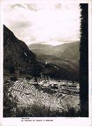 25070. Postal  DELPHES (delfos) Grecia. Teatro Y Templo De Apolo - Grecia