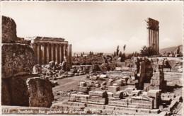 Lebanon Baalbek General View Of Acropolis Photo - Lebanon