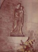 81  DOURGNE  .-. Abbaye D En Calcat - La Vierge Du Cloitre - Dourgne