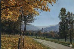 81  DOURGNE  .-. Abbaye D En Calcat - Autre Vue Monastere Et Montagne Noire - Dourgne