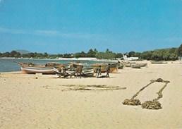 HAMMAMET  BARQUES DE PECHE (dil315) - Tunisia