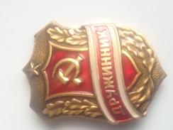 Placa Guardia Voluntaria Del Pueblo. Druzhinik. URSS. Rusia Comunista. Años ´70. Esmaltada - Rusia
