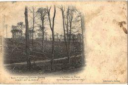CPA N°3562 - SAINT VINCENT DU LOROUER - FORET DOMANIALE DE BERCE - LA VALLEE DES PIERRES APRES L' OURAGAN FEVRIER 1900 - France