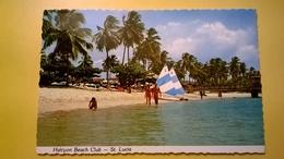 CARTOLINA VIAGGIATA ST. LUCIA RARA 1979 HALCYON BEACH AFFRANCATURA FAUNA UCCELLI - Cartoline
