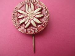Insigne De Manifestation ?/SUISSE ?/Edelweiss/Biscuit Vernissé ?/Fixation à épingle/Furhmann Neuchâtel/1953       MED137 - Medallas Y Condecoraciones