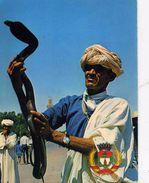 ETRANGERE   L 3   /   AFRIQUE    /  MAROC  /  CHARMEUR DE SERPENTS   CPM / CPSM  10 X 15 - Marrakech