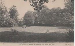 92 - ANTONY - Maison De Famille , Un Coin Du Parc - Antony