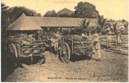 MAYOTTE ... RECOLTE DES BANANES - Mayotte