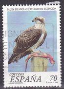 Spagna, 1999 - 70p Pandion Haliaetus - Nr.2979 Usato° - 1931-Oggi: 2. Rep. - ... Juan Carlos I