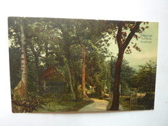 Botanical Gardens - Sheffield - Sheffield
