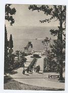 Old Postcard SOCHI Russia - Russia