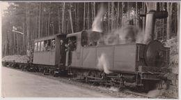 LE TRAIN N° 7 PRES DE NEUVIC D'USSEL (DERNIER TRAIN : TRAVAUX) : PHOTO BACUET 16,7 CM X 9 CM - RARE - 2 SCANS - - Other Municipalities