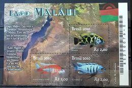 BRAZIL B 150 Lago Malaui Peixe 2010 LAKE FISH - Unused Stamps