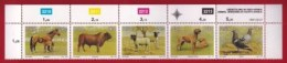 RSA, 1991, MNH Stamps In Control Blocks, MI 813-817,Animals, X653A - South Africa (1961-...)