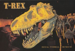Royal Tyrrell Museum At Drumheller, Alberta, Tyrannosaurus Rex (PC262) - Museum
