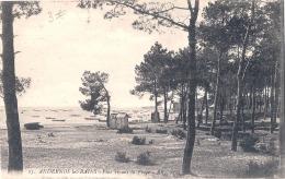 ---- --- 33 ------  ANDERNOS  LES BAINS -  Pins Rivant La Plage TTB écrite - Andernos-les-Bains