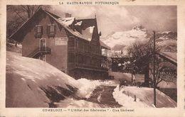 COMBLOUX L HOTEL DES EDELWEISS CLOS LACHENAL - Combloux