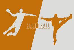 T84-032  ]  Balonmano Handball Handbal,  China Pre-stamped Card,postal Stationery - Handball