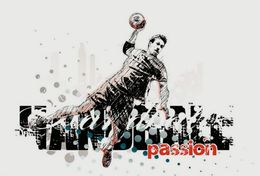 T84-033  ]  Balonmano Handball Handbal,  China Pre-stamped Card,postal Stationery - Handball