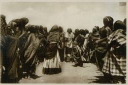 SOMALIA ITALIANA FAUNE AFRICAINE 3 VINTAGE POSTCARD - Somalia
