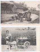 Lot 2 Cpa Laitière Flamande Et Laitière Bruxelloise  1902 - Cartes Postales