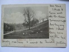 GB - Barry - Porthkerry Park - 1905 - Glamorgan