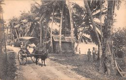 "D6245 ""SRI LANKA - BESIDE THE KELANIYA RIVER, COLOMBO""  ANIMATA, CARRO CON BUE. CART  NON  SPED - Sri Lanka (Ceylon)"