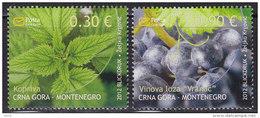 Montenegro, 2012, Flowers, MNH (**) - Montenegro