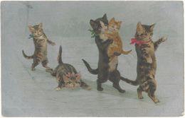 Cpa Fantaisie - Chats Humanisés Sur De La Glace ( Argentée )  ( AN ) - Cats