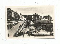 Photographie , 9 X 6 , ALGERIE , Alger , Les Rampes Et Le Boulevard - Lieux