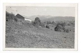 LA TOUR D'AUVERGNE  - Carte Photo Colonie De Vacances -  - L 1 - Autres Communes